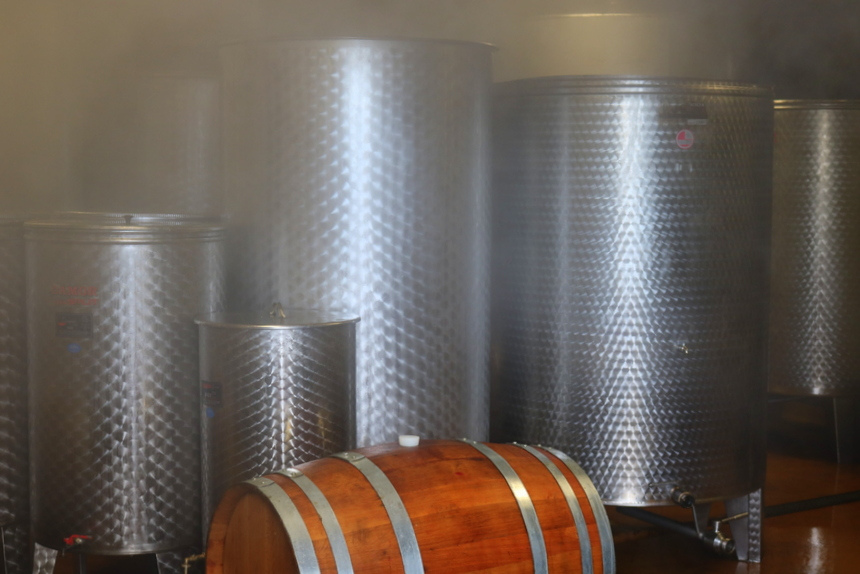 Pelješac, The best croatian wine